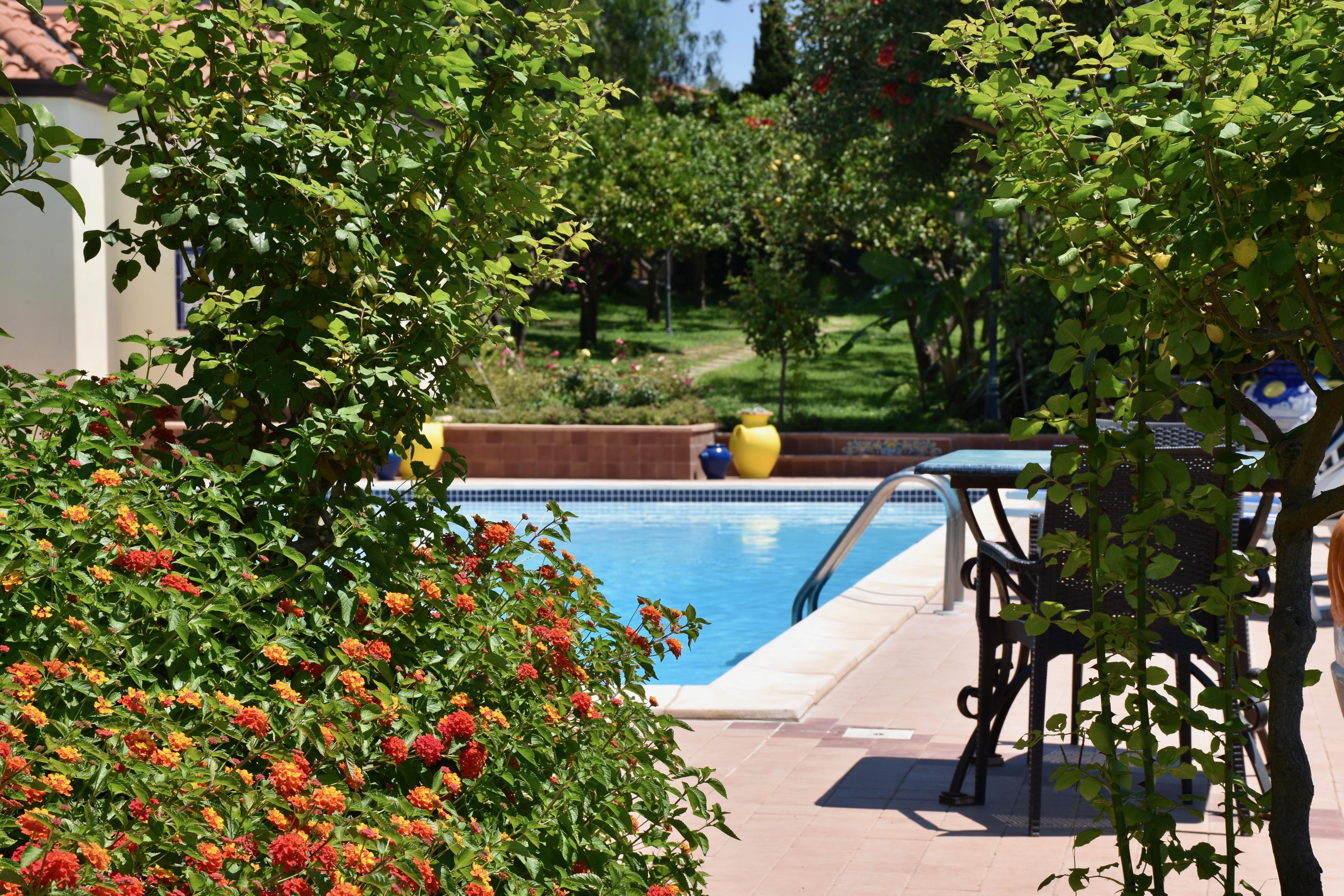 La piscina 6